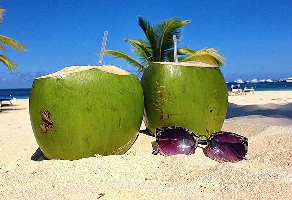 доминиканский кокос