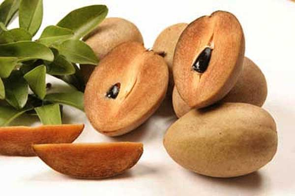 сочный фрукт Нисперо